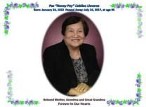 Paz C. LLEVARES obituary photo