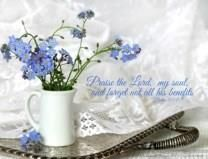 Linda S. Smouse obituary photo