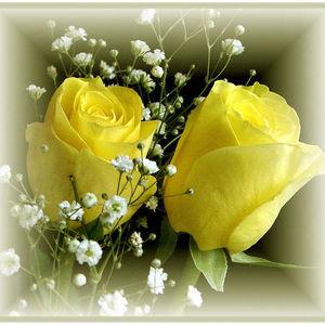 """Rose """"Rosie"""" Monteleone ellis"""