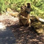                    &#39;BIG BEAR&#39;