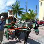 Vic by the horse-drawn carriage in Cozumel, Mexico, 10/21/2011