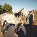 Grey horse, wasn't around long after bucking Greg off, causing a broken collarbone 1998
