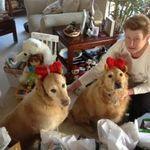 Mare & her boys - Christmas 2012