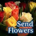  Send Flowers 