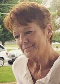 Darlene Lavon Fleming obituary photo