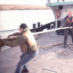 Working with Dave Jones on tug Shannon at Gaelic Tugboat