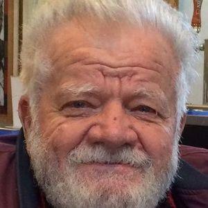 Romulus Puiu Obituary Photo
