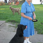 Mom with her dog, Abby and her goat in the background.