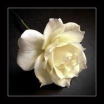 Margaret E. Rambo obituary photo
