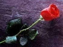 Frances Elizabeth Countess obituary photo