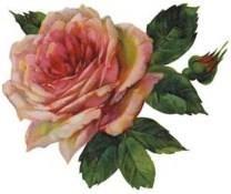 Dorothy Joyner Moore obituary photo