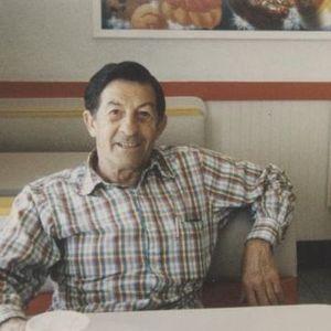 Dominic A. Lucia  Obituary Photo