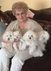Pastore Mary Ann obituary photo