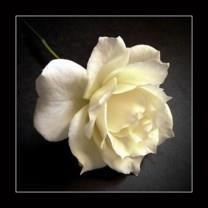Alice Matilda Hart obituary photo
