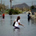 Hurricane Maria Victims