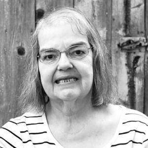 Darlene (Folk) Meier Obituary Photo