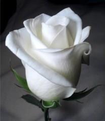 Mercedes ALBIZA obituary photo