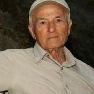 Dimitrios M. Potamousis