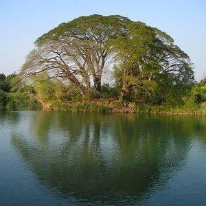 Douangpy Phommavixai