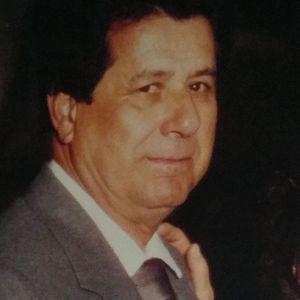 Mr. Luis M.  Llamas