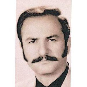 Victor George Awad Obituary Photo