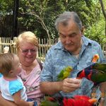 Feeding parrots at the zoo