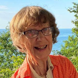 Ann Holstege-Schutt