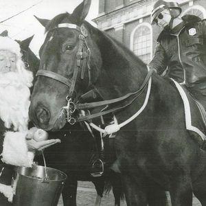 Robert M. Morgan, Jr. Obituary Photo