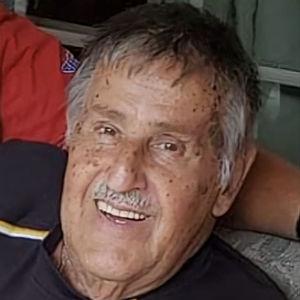 Albert John Stegena