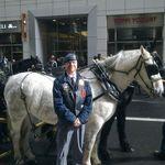 Veteran's Day.  (Nov 2011)