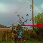 a rainbow over Amelia's garden