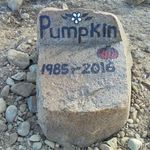 A beautiful tombstone by Joanie.
