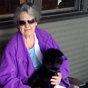 Dorothy Anne Tilson Obituary Photo
