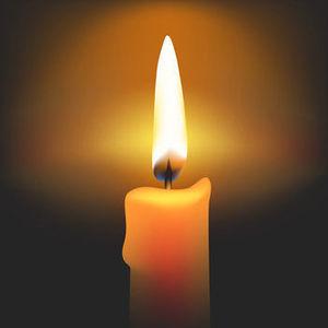 Erna Standar Obituary Photo
