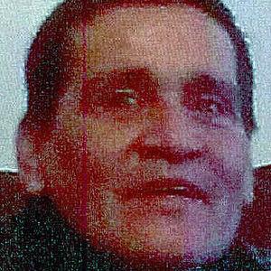 Luís  Damiani